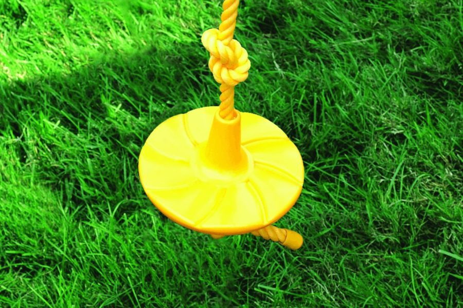 Swing Disc with Rope